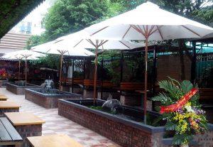 Những Mẫu Dù Che Quán Cafe Bar Spa Sang Trọng